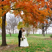 St. Louis Wedding Photographer Arch2 200x200 Portfolio